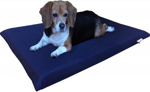 Best Orthopedic Dog Beds