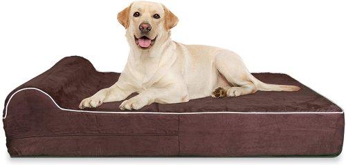 Best Extra Large Dog Bed