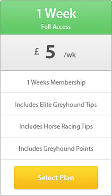 1 week modern pricing table - 7 Day Membership