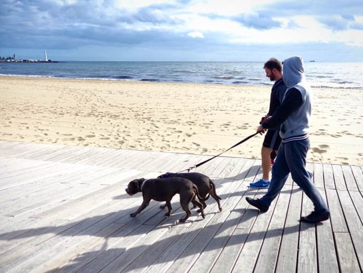 Exercise with YourDog