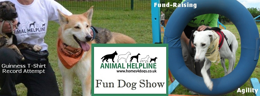 Fun Stuff to do at Animal Helpline Wansford Dogshow