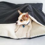 Cave Dog Bed Snuggle Bed Dogs Of Australia