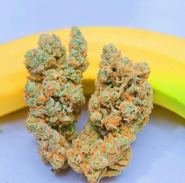 banana og strain