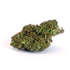 acdc strain, buy acdc strain online