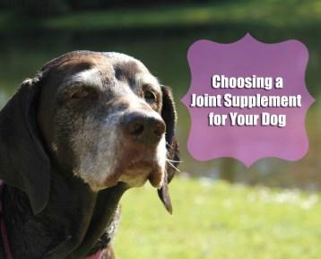 Choosing a joint supplement