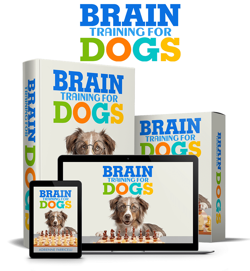 Brain Training For Dogs Review 6
