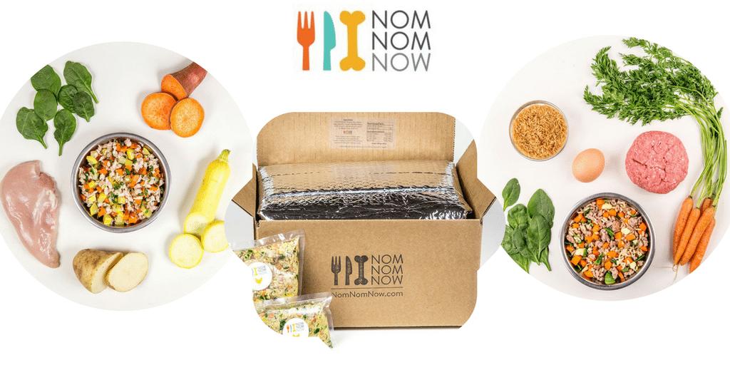 Nom Nom Now box and dog food on plates