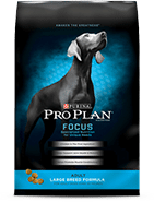 Top 10 Best Dry Dog Food 2019 24