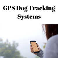 GPS Dog Tracking - Non Cellular