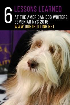WKC Dog Show (2)