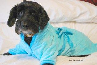 victor in bathrobe
