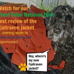 dog with fjallraven jacket