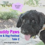 Muddy Paws dog and wine festival