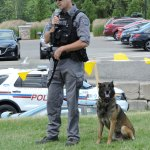 police dog demonstration at muddy paws wine and dog festival vineland ontario dogtrotting.net