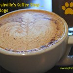 coffee at Fido coffee shop Nashville dogtrotting.net