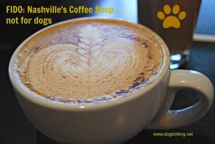 coffee at Fido coffee shop Nashville dogtrotting.net
