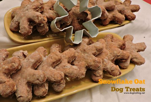 snowflake oat dog treats