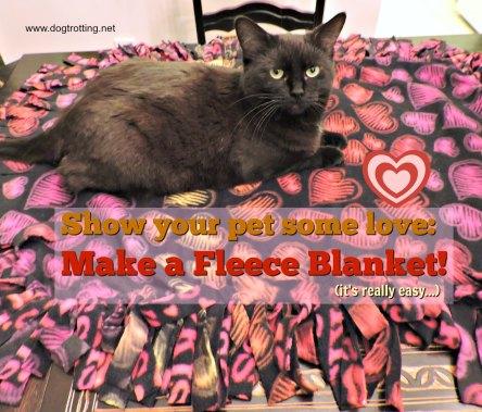DIY Fleece dog blanket project