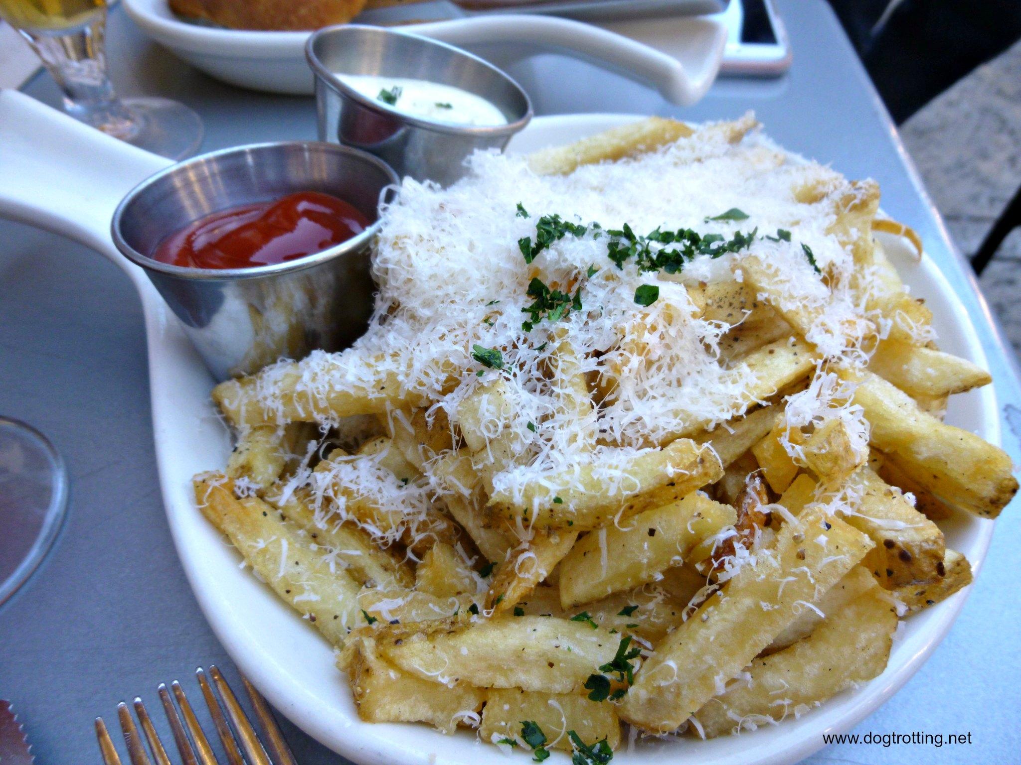 seasoned gourmet cheese fries at cafe in Balboa Park in San Die