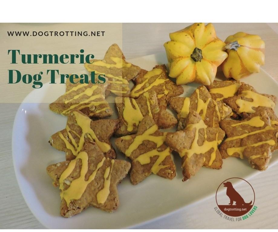 recipe for turmeric dog treats