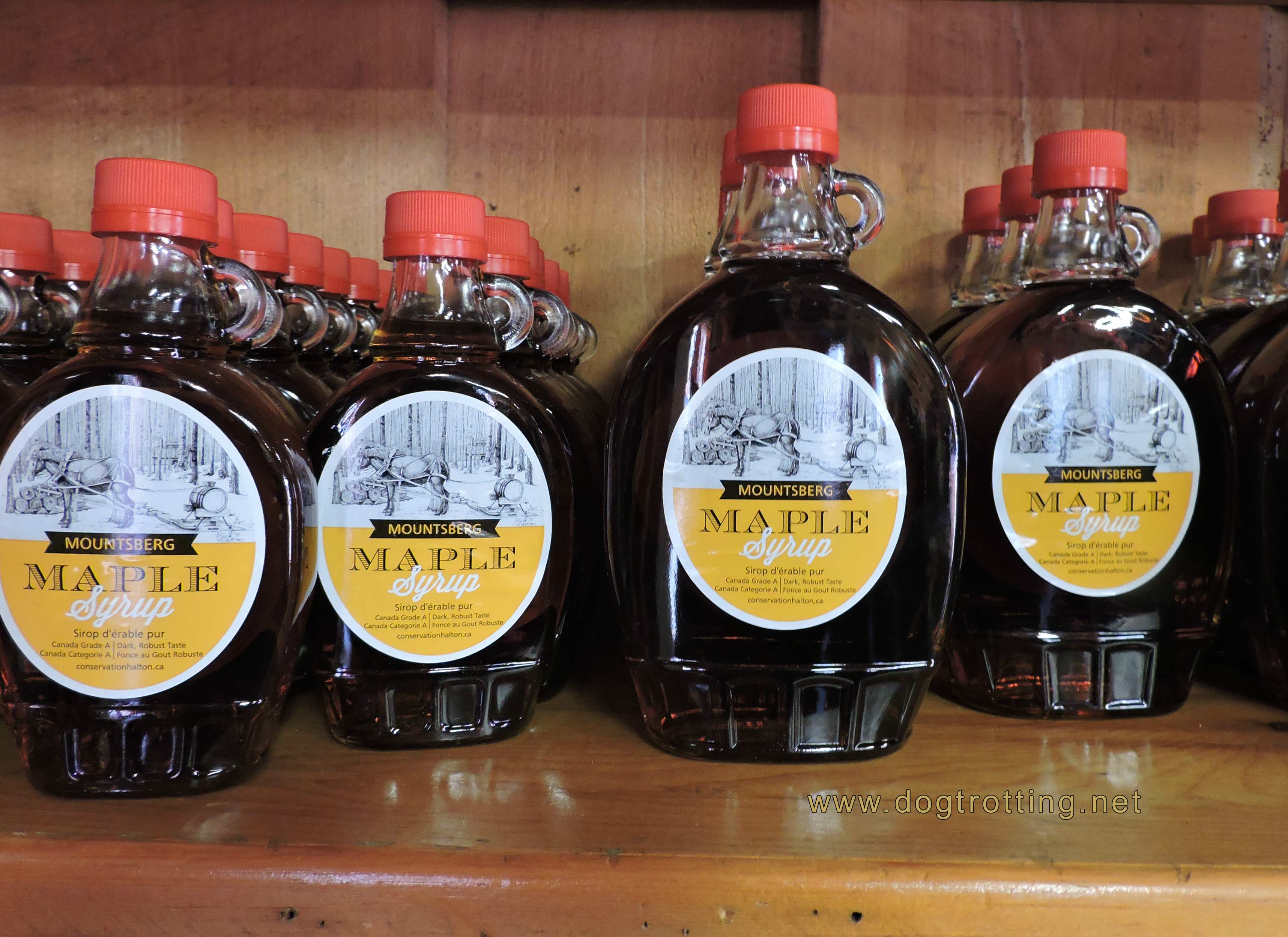 Maple Syrup at Mountsberg Conservation Area, Campbellville Ontario