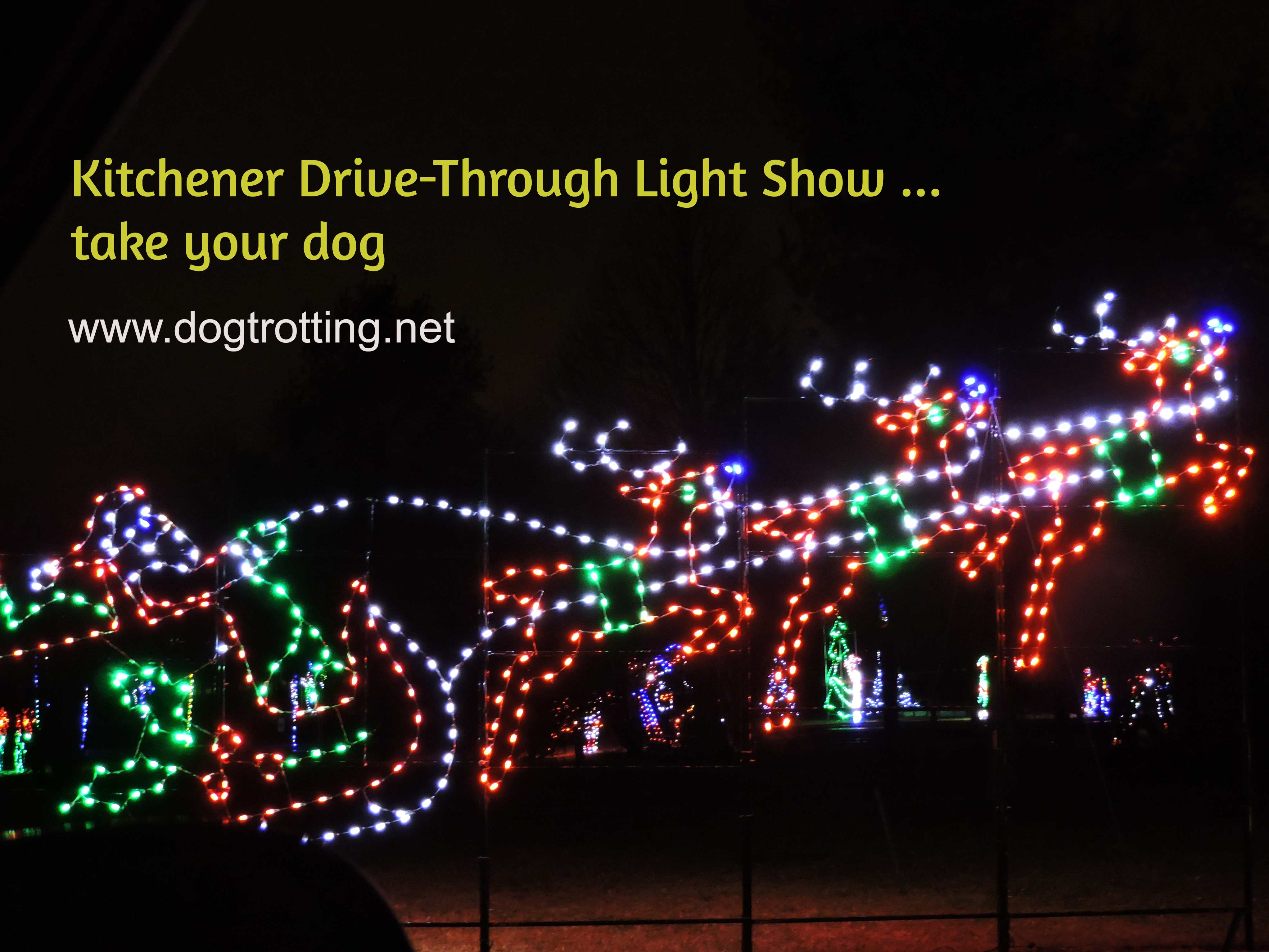 Christmas lights shapped like Santa and sleigh with text: Kitchener Drive-through light show - take your dog