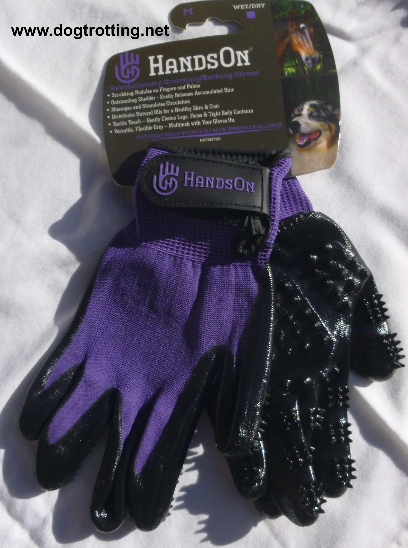 purple hands on grooming gloves