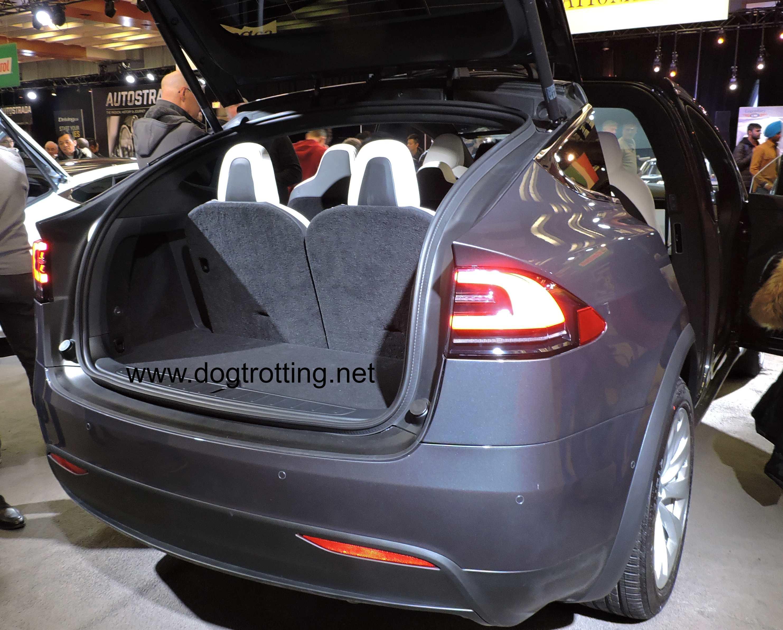 trunk of grey tesla