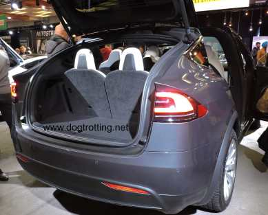 trunk of grey tesla