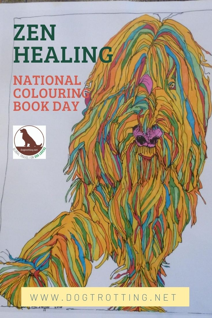 dog image from colouring book