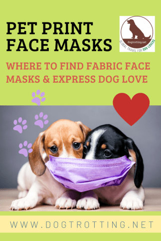 two dogs with face in mask on 'Where to find fabric face masks' poster