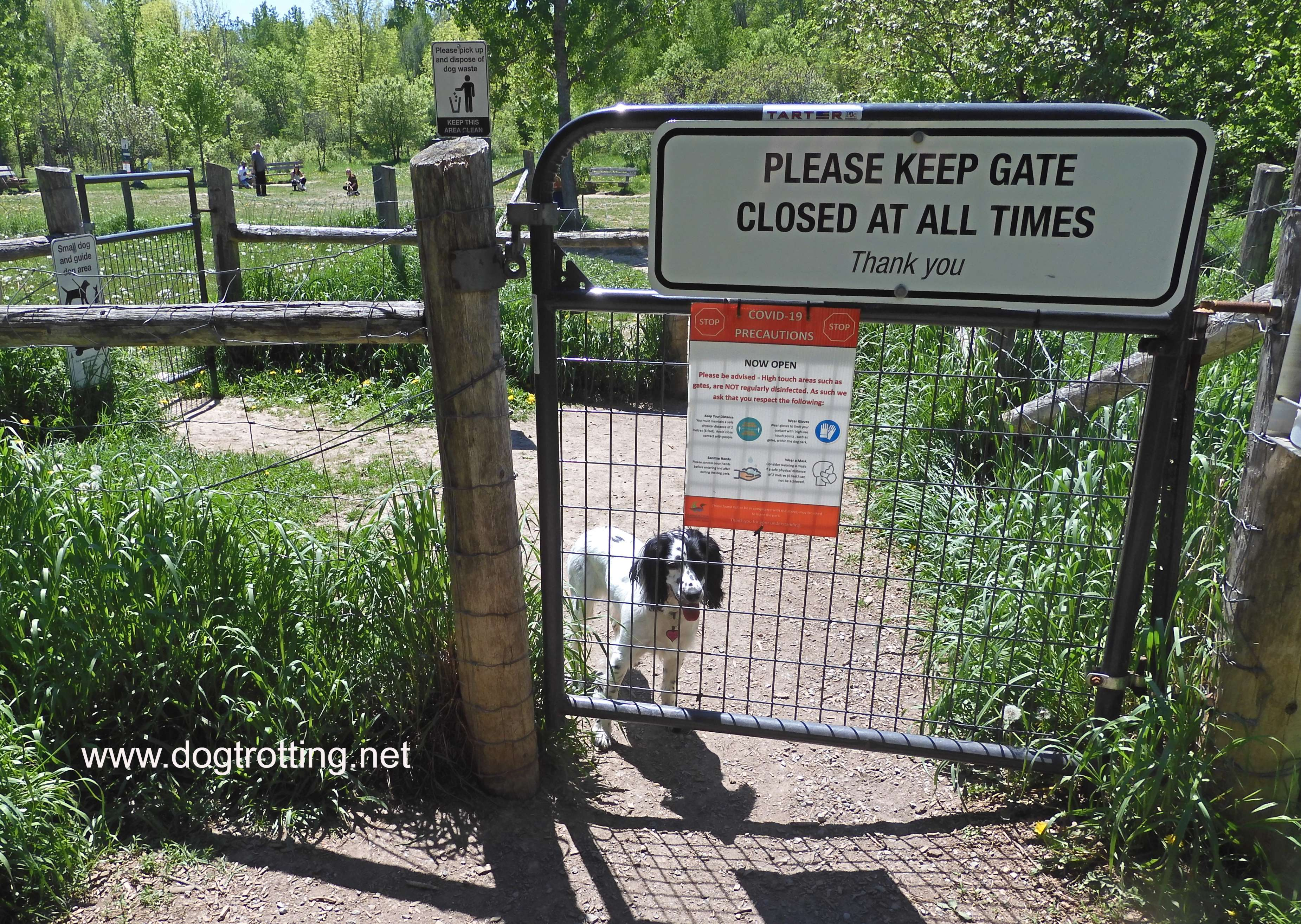 gateway to wooded off leash dog park with black and white dog sitting by fence at Howler's park