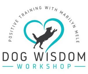 Dog Wisdom Workshop