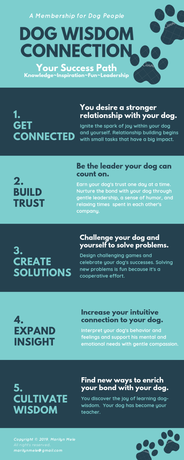 dog wisdom connection