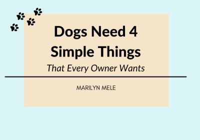 Dogs Need 4 Simple Things That Every Owner Wants