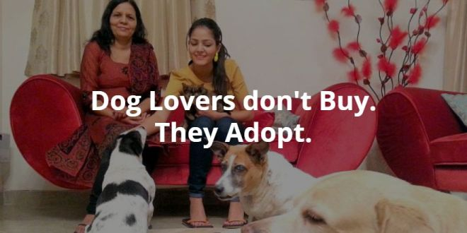 dog lovers adopt