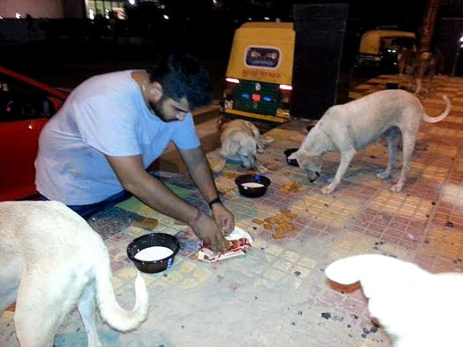 feeding stray dogs, Delhi feed a dog, Humans of New Delhi