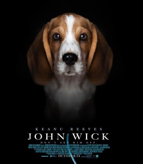 Don T Kill John Wick S Dog