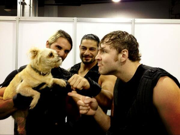 10 wrestlers who love dogs