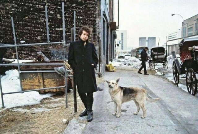 Why Dogs Love Bob Dylan The Nobel Prize Winner