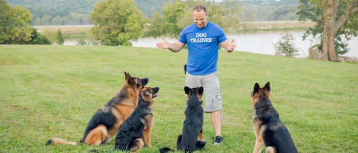 Chris White - D.O.G. Obedience Group Owner - Slider image 1