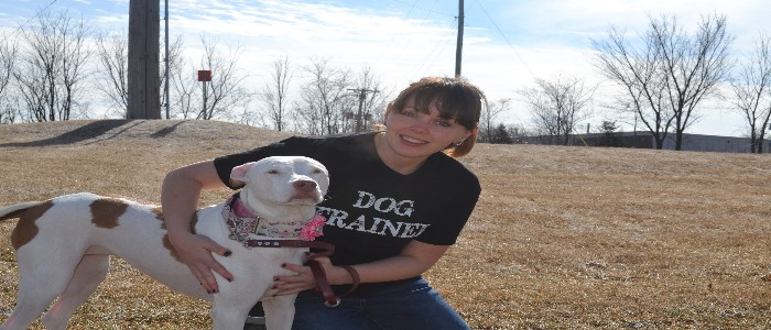 Shawna - D.O.G. Obedience Group - Trainer