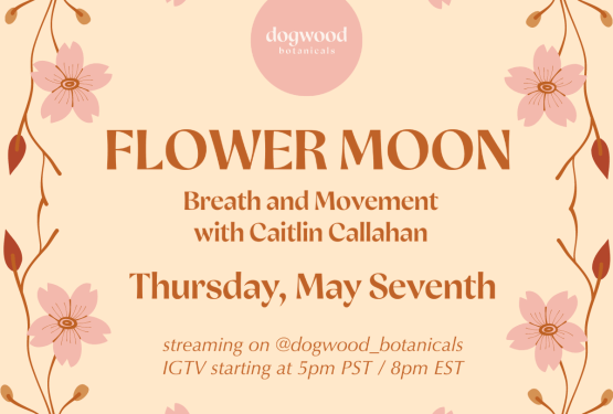 Flower Moon Full Moon Breath and Movement Yoga Class by Caitlin Callahan for May 7th 2020, free online wellness clas