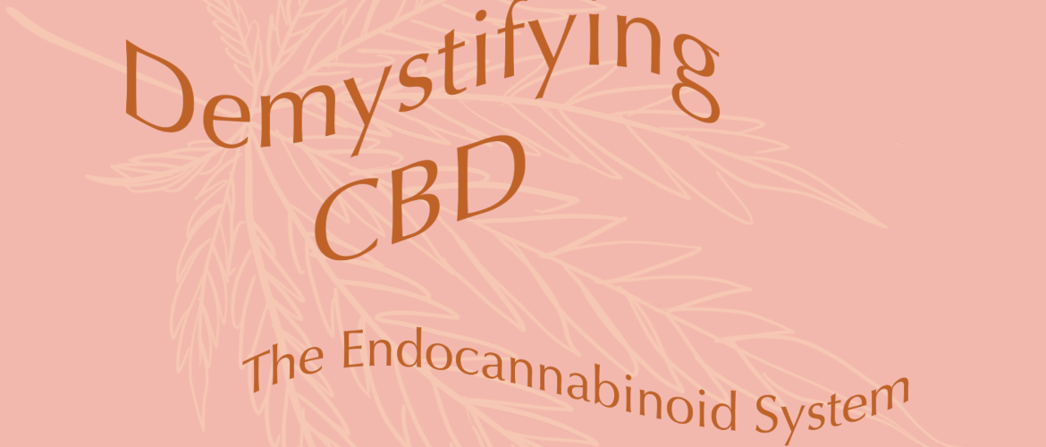Demystifying CBD with Dogwood Botanicals on The Blossom blog, CBD education, The Endocannabinoid System, THE ECS, Hemp education, cannabis education, hemp helps, herbal wellness