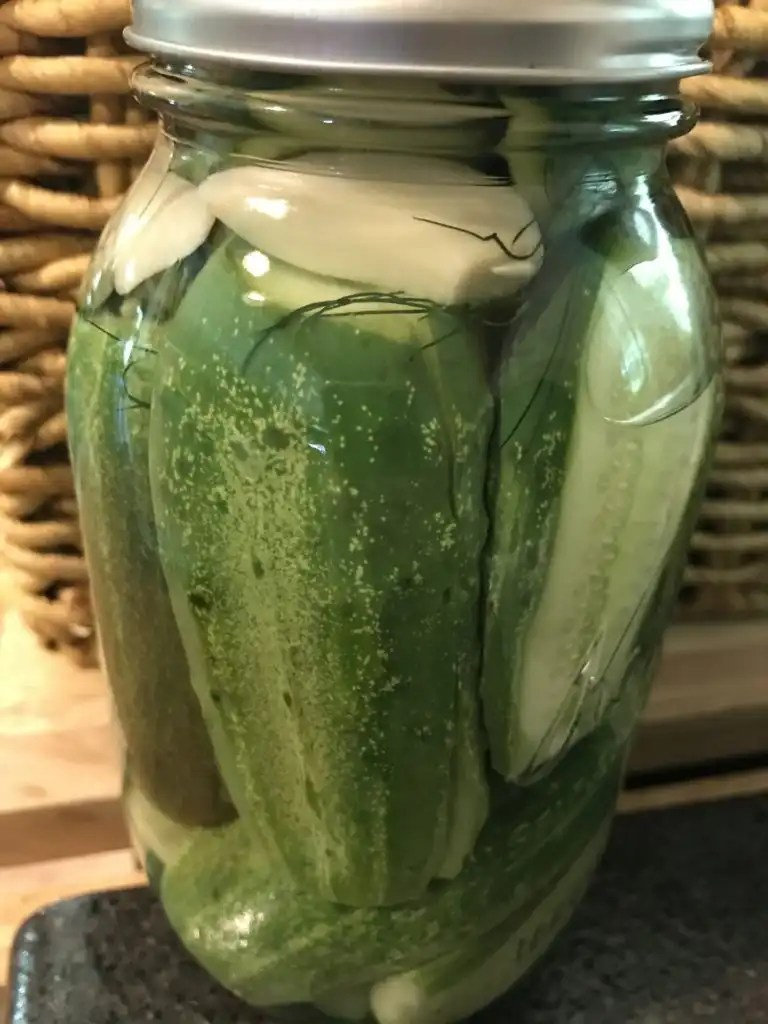Use fresh dill in refrigerator pickles for a yummy summer treat. Dill is easy to grow in your garden.