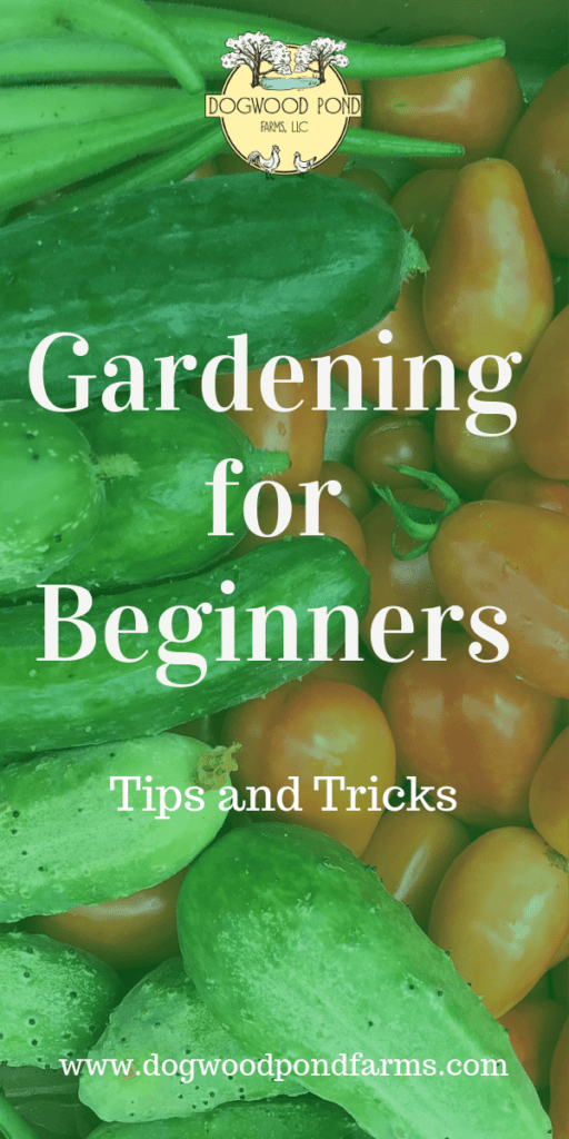 Check out these tips to help you have a great garden. Gardening for beginners - tips and tricks