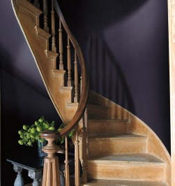 benjamin-moore-color-of-the-year-2