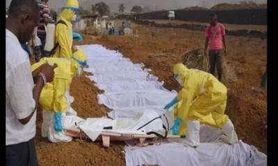 Épidémie D'ebola, L'organisation Mondiale De La Santé, Sonne,alarme Mondiale