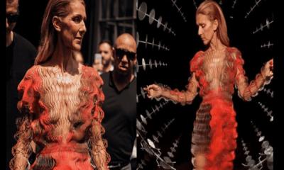 Céline Dion ,méconnaissable, Ses Fans Sont Inquiets ,photos