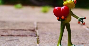 La St Valentin vire au cauchemar pour un couple